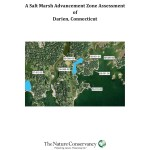 Darien Salt Marsh Advancement Zone Assessment 2014